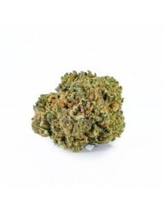Cannactiva Marihuana CBD...
